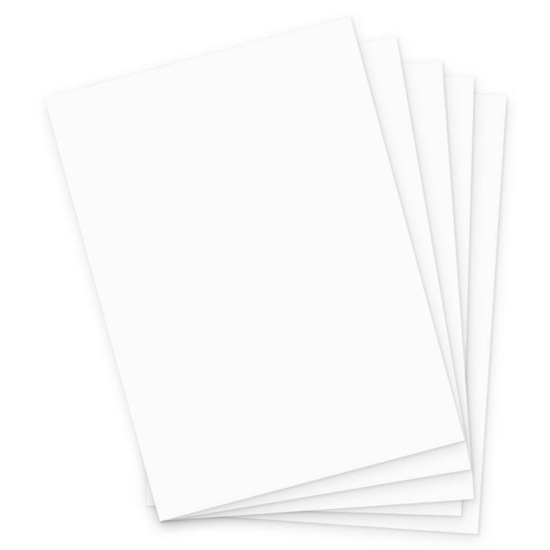 Cartolina • Branca • 10 Un  • 150g
