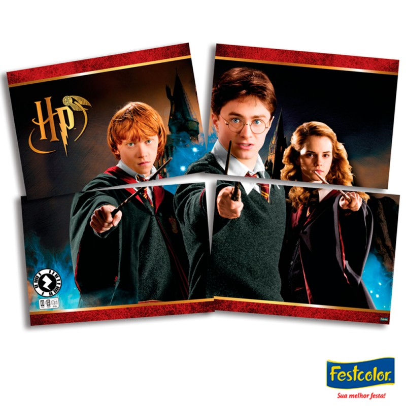 Painel Decorativo •  Harry Potter • Festcolor