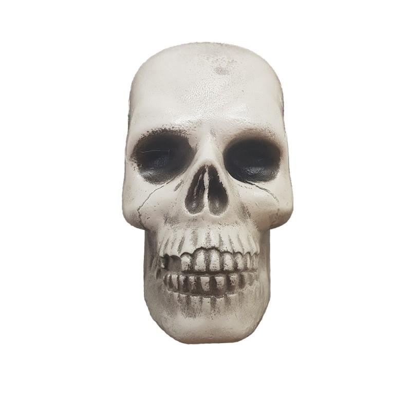 Cranio Plástico • Grande • 1un • Halloween • Importfest