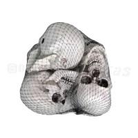 Cranio Plástico • 6 Unidades • Halloween